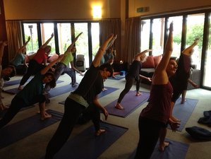 Geothermal Yoga Weekend in New Zealand Retreat