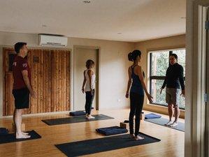 4 Day Food, Health, Happiness, and Yoga Retreat in Tasman, South Island