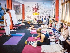 30 Day 300-Hour Intensive Multi-Style Yoga Teacher Training Course in Rishikesh