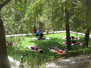 7 Days Rejuvenating Meditation Yoga Retreats in Andalusia