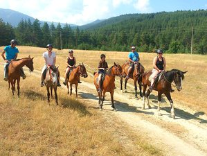 3 Day Horseback Riding Vacation in Rila National Park, Balkan Peninsula