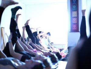 21 Tage 200-Stunden Intensive Yogalehrer Ausbildung in Hohenroda, Hessen