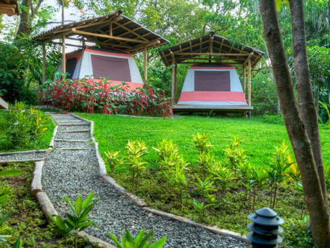 8 Days Journey to the Heart Meditation & Yoga Retreat Costa Rica