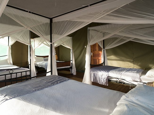 4 Days Tanzania Serengeti National Park Safari