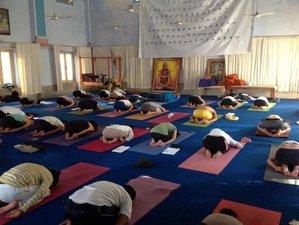 38 Days 300-Hour YTT Course in Rishikesh, India