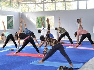 26 Day 200-Hour Yoga Teacher Training Course in Rishikesh, India