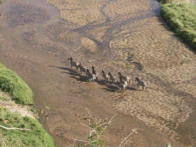 7 Days Big Tanzania Safari