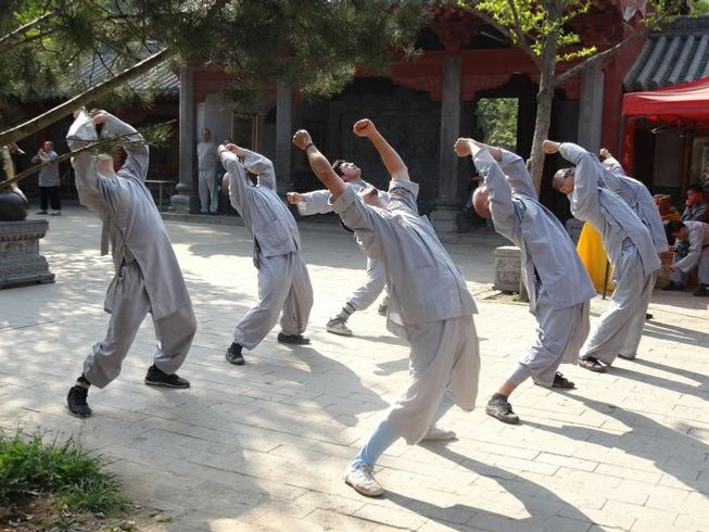 8 Months Songshan Shaolin Kungfu Training in China