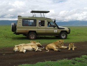 5 Days Highlight Midrange Safari in Tanzania