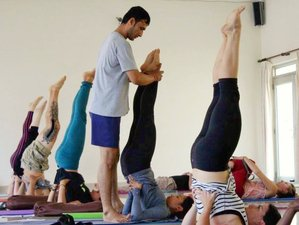 300-Hour Advanced Hatha and Ashtanga Yoga Teacher Training Rishikesh India