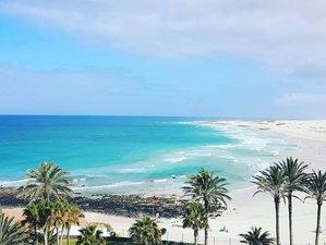 8 Days Wonderful Surfcamp Fuerteventura, Spain