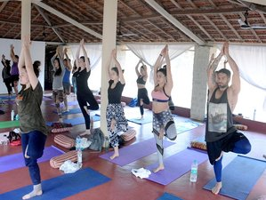 14 Day Meditation and Yoga Retreat in the Land of Smiles, Mandrem, Goa