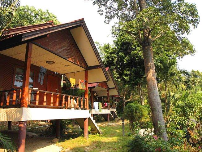 29 Tage Premium Detox Saftkur und Yoga Urlaub in Surat Thani, Thailand