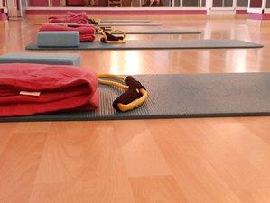 30 Tage 200-Stunden RYT Online Hatha Yogalehrer Ausbildung