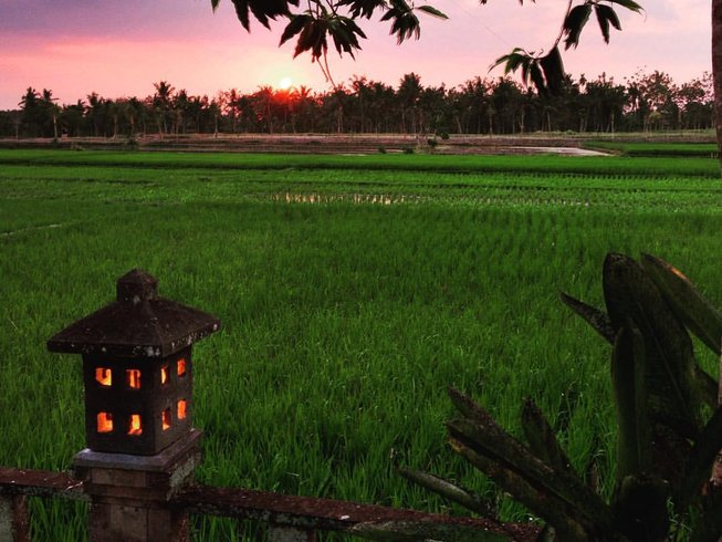 8 Days Bali Yoga Retreat Alchemy of Happiness