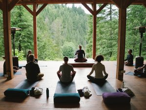 4 Day Wilderness & Unwind Yoga Retreat in Fraser Valley, British Columbia