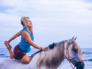 7 Days Harmonious Equine Yoga Retreat Costa Rica