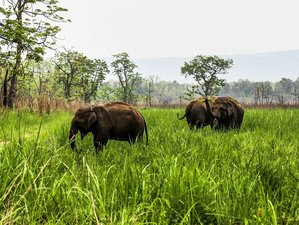 4 Days Chitwan National Park Tour in Nepal