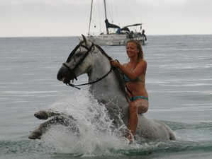 7 Days Natural Park with Horseback Trails, Mindfulness, Yoga and Hiking Holidays in Andalusia, Spain