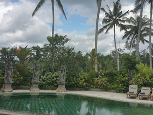 5 Days Kick Start To Wellness  Detox  Retreat in Bali