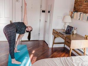 Online / Self-Paced 200-Hour Holistic Yoga Teacher Training Hatha, Ashtanga Vinyasa and Ayurveda