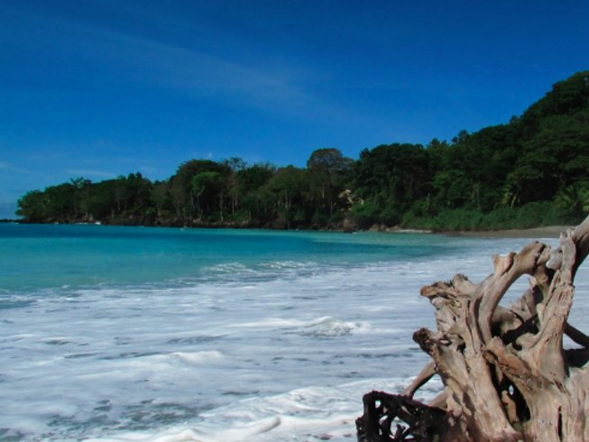 10 Days Surf and Yoga Retreat in Costa Rica
