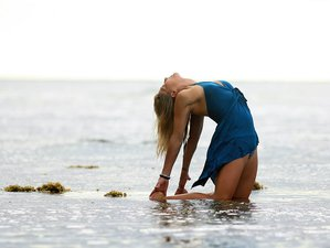 3 Days Mid-Week Escape Yoga Retreat USA