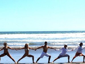 3 Days Sonoma County Wine & Dine, Couple's Yoga Weekend