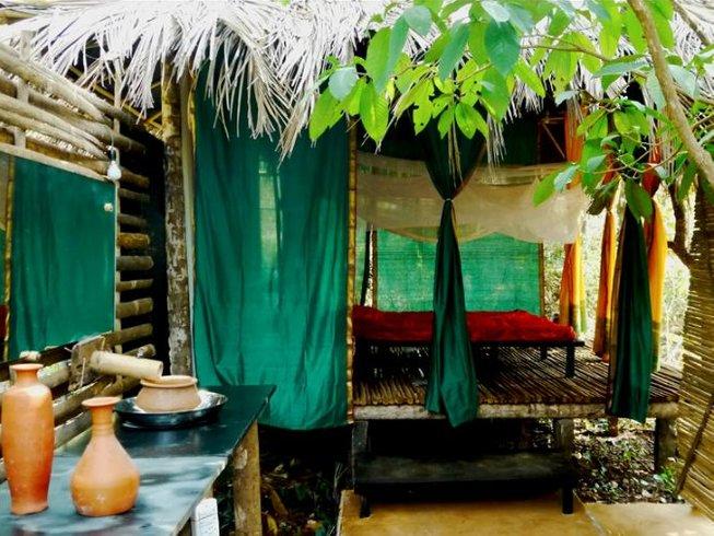 15 Days Sound, Creativity, and Yoga Retreat in Goa and Tiruvannamalai, India