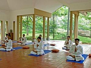 15 Days Wellness Retreat in Bangalore, India