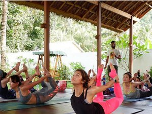 7 Days Superconscious Meditation and Yoga Retreat in Lombok, Indonesia
