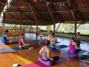 8 Tage Selbstheilung und Yoga Retreat auf Bali, Indonesien