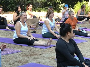 3 Day Fuel the Flame of Your Inner Desire Yoga Retreat in California