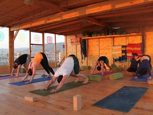 11 Days Surf and Yoga Retreat in Tamraght, Morocco