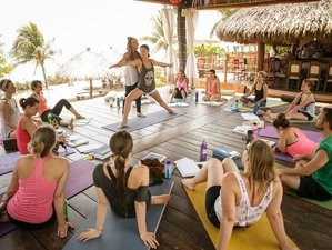 8 Days in Paradise Yoga Retreat in Mexico