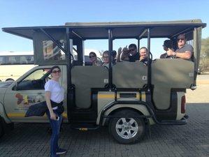 3-Daagse Klassieke Big Five Kruger National Park Safari in Zuid-Afrika