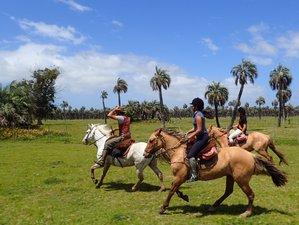 7 Days Beach and Estancias Horseback Riding Holiday in Rocha Department, Uruguay