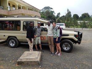 12 Days Zanzibar Beach Holidays and Safari in Arusha, Tanzania