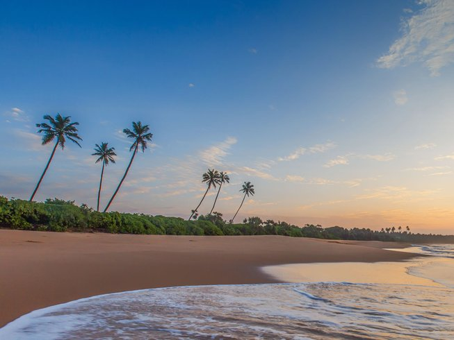 8 Days Luxury Sri Lanka Retreat for All levels