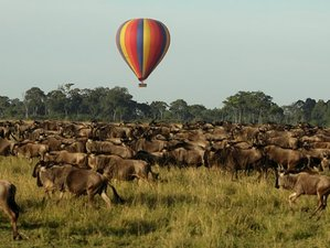 3 Day Best of Great Masai Mara Game Reserve Safari with Hot Air Balloon Ride