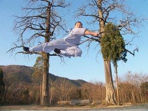 3 Years Intensive Kung Fu Training in China
