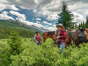 3 Days Stoney Creek Camping Horse Riding Holiday in Alberta, Canada