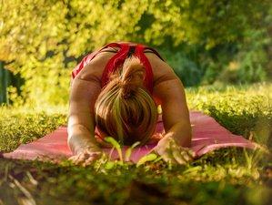 """3 jours en week-end """"renforcer son immunité et se ressourcer"""", yoga et do in dans le Beaujolais"""