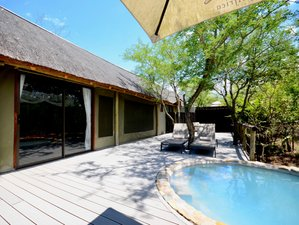 6-Daagse Luxe Safari in Balule Nature Reserve en Kruger National Park, Zuid-Afrika