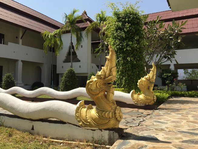 6 Days New Year's Silent Meditation and Yoga Retreat in Chiang Mai, Thailand