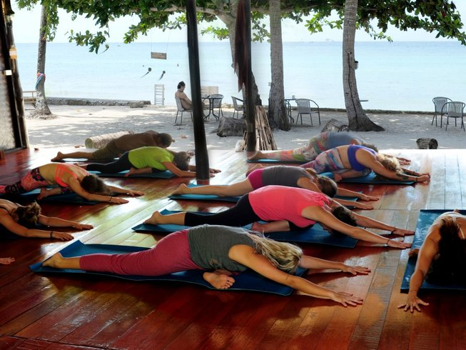 7 Days Active Meditation, Celebration, and Yoga in Koh Phangan, Thailand