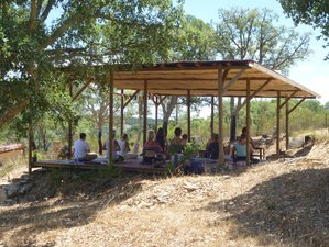 8 Day Yoga Retreat in the Midst of the Alentejo Nature in Odemira