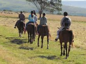 8 Day Mewar by Horseback Riding Holiday in Rajasthan