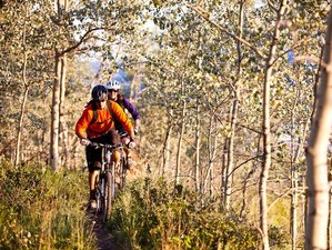 8 Day Mountain Bike Holiday in Whitehorse, Yukon