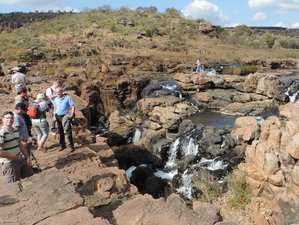 8 Days Budget Safari South Africa and Mozambique